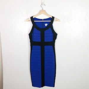 Cache Blue & Black Bodycon Dress